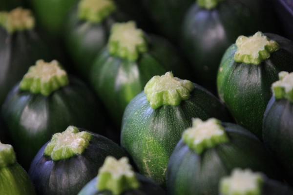 zucchini__rund56680d2ab97da