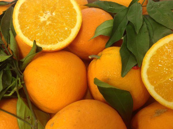Navel-Orange