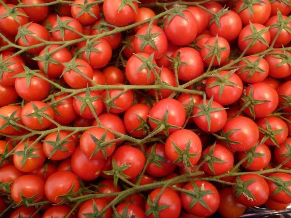 Tomaten - Kirschtomaten rot