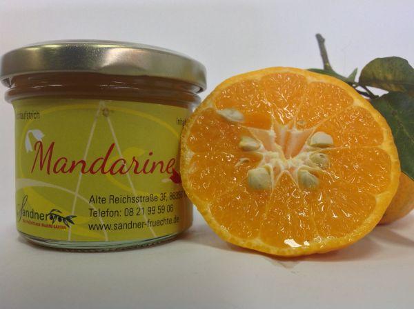 Mandarinen-Fruchtaufstrich