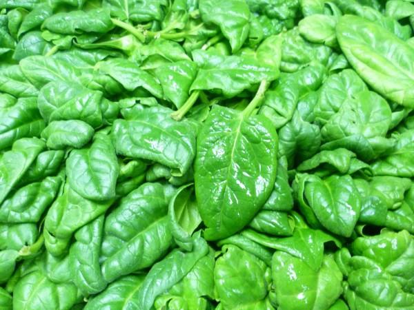 salatspinat571f174aa673d