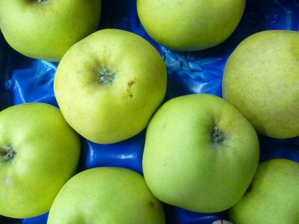 Renette-Äpfel (Bratäpfel)