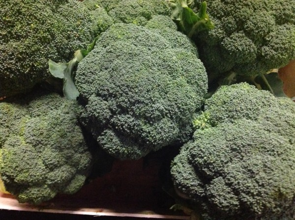 Broccoli56e6fb0f8614b